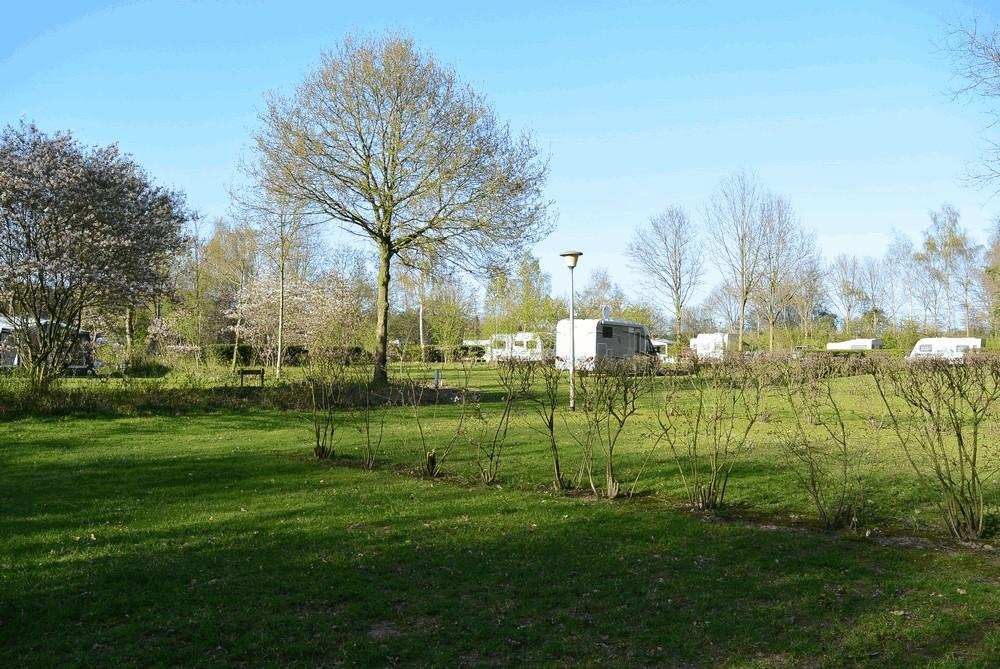 camperplaats_camping_drenthe_1000_02