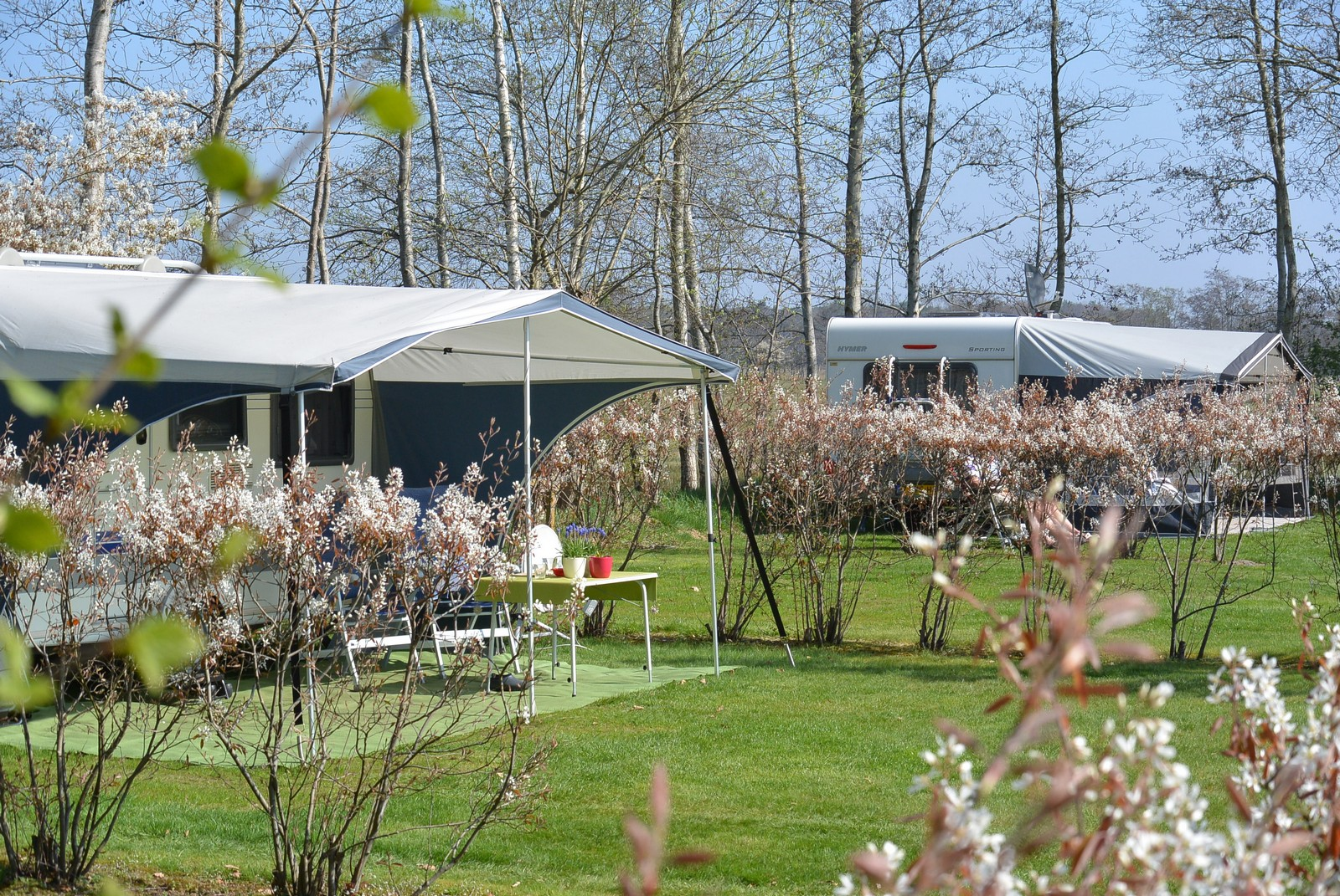 Camping_jellyshoeve_havelte01