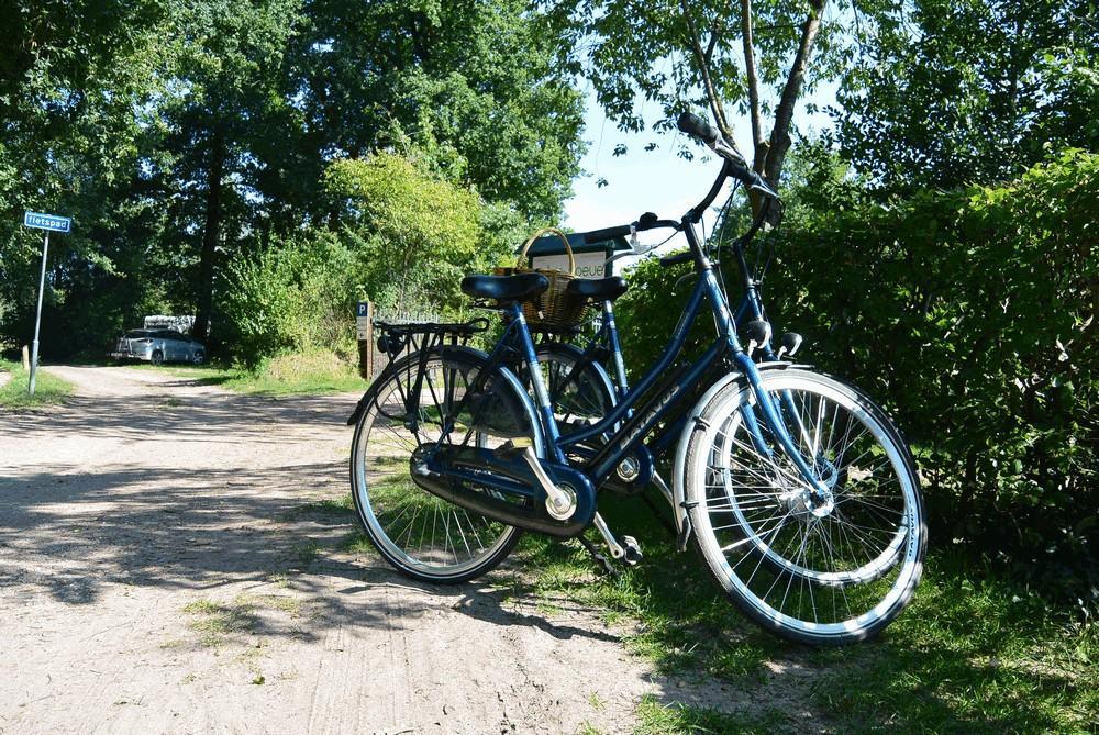 fietsen_routes_havelte_1000_06