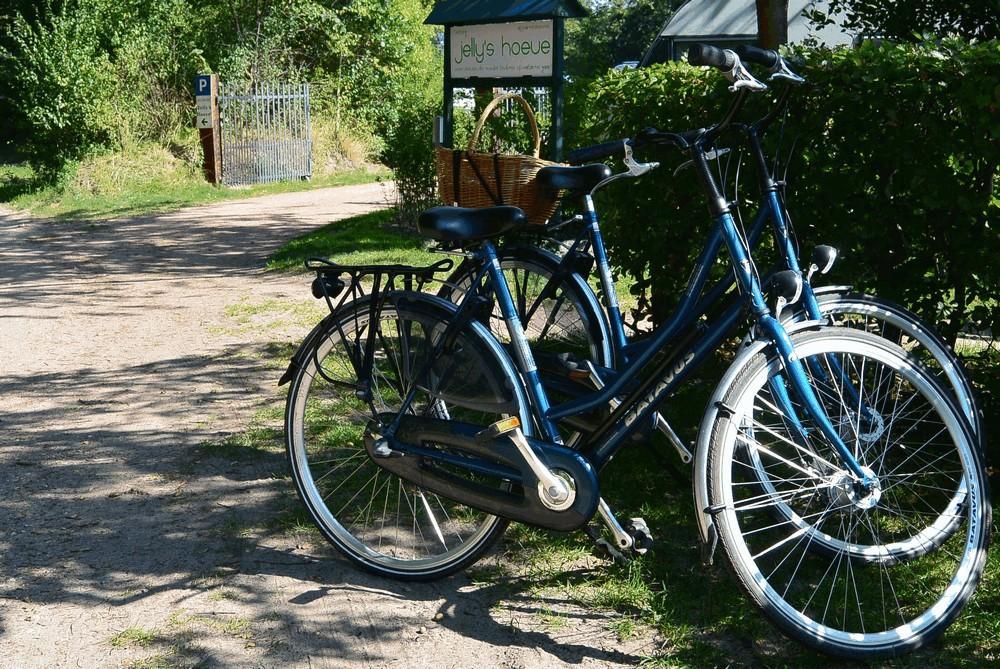 fietsen_routes_havelte_1000_07